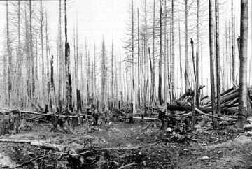White Rock Fire Sept 1910