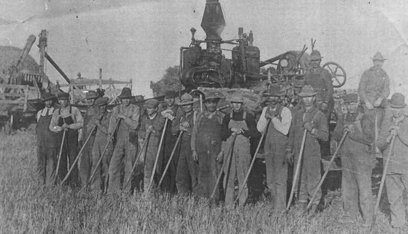 Threshing crew Provost Alberta
