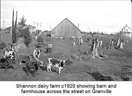 Shannon Dairy c1920